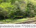 翠綠 鮮綠 鐵路 77306120