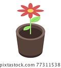 Flower pot icon, isometric style 77311538