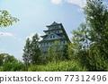 德川明城 77312496