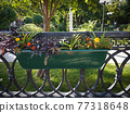 Hanging flowerbed in the city park 77318648
