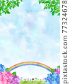 雨季 梅雨 繡球花 77324678