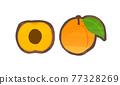 杏 水果 杏子 77328269