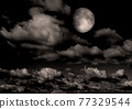 The moon in the night sky 77329544