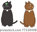 動物 俄羅斯藍貓 淺藍色 77330498