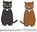 動物 俄羅斯藍貓 淺藍色 77330501