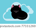 Black cat sleeping card 77331260