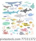 漂亮 矢量 海豚 77331372