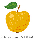 Apple yellow fruit, healthy organic nutrition product. Vector cartoon flat trendy illustration hand drawn isolated 77331960