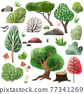 Watercolor forest elements, hand drawn vector illustration. 77341269