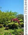 花園 院子 花朵 77341944