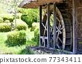 花園 院子 池塘 77343411