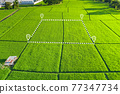 Land plot in aerial view for development or investment. 77347734