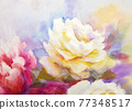 Peonies and roses bouquet. Artistic sketch etude. 77348517