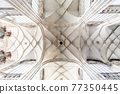 Ceiling of St Vitus Cathedral in Prague 77350445
