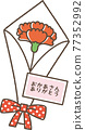 carnation, carnations, mothers day 77352992
