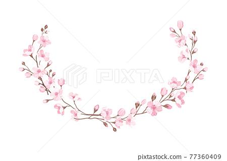 Semicircle Border Arranged of Twigs of Sakura or Cherry Blossom Vector Illustration 77360409