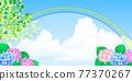 繡球花 矢量 花朵 77370267