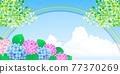 繡球花 矢量 花朵 77370269