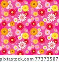 花朵 花 花卉 77373587