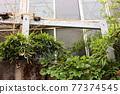 home, housing, residence 77374545