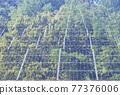 太陽能發電 太陽能 光伏 77376006