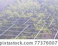 太陽能發電 太陽能 光伏 77376007