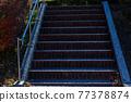 公園樓梯 77378874