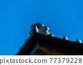 瓦 屋頂 房頂 77379228