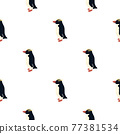 Isolated seamless pattern with black crested penguin elements. Nordic animal backdrop. Doodle print. 77381534