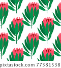 Isolated seamless botanic pattern with doodle pink protea flower and green leaves. White background. 77381538