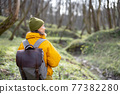 Woman in hiking clothes in green spring forest 77382280