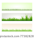 Set of green grass banners in different shades of green lengths and densities. Natural elements templates collection. Jpeg 77382828
