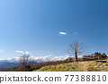 Northern Alps and fields 77388810