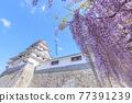 城堡塔樓 天守閣 城堡 77391239