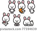 兔 兔子 奄美 77394639