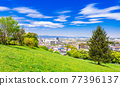 Suburban residential area with blue sky 77396137