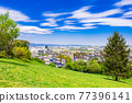 Suburban residential area with blue sky 77396141