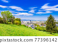 Suburban residential area with blue sky 77396142