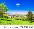 Suburban residential area with blue sky 77398962