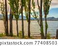 Golden sunset on Osoyoos lake. Summer season in Okanagan valley 77408503