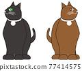 俄羅斯藍貓 淺藍色 矢量 77414575