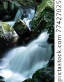 Fresh green valley 77427025