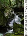 Fresh green valley 77427026