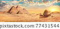 Pyramids in desert of Giza 77431544