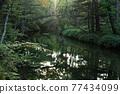 河 自然 風景 77434099