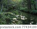 河 自然 風景 77434100