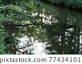 河 自然 風景 77434101