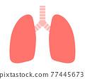 肺 77445673