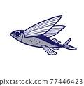 飛魚 魚 飛的魚 77446423
