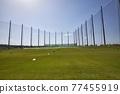 golf, golfing, golf course 77455919
